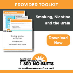 16_CSH_Toolkits_236x236_Smoking, Nicotine and the Brain.jpg